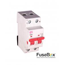 Fusebox IT1002 - Main Switch 100A 2P